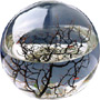 EcoSphere Ökosystem - Bild 6
