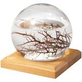 Kirschbaum Plattenst�nder f�r kleine EcoSphere Kugel