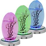 LED-Plattenständer für kleines EcoSphere Oval